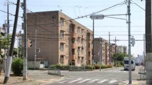 【和泉市】阪和線信太山駅前「旧南王子村」の市営住宅の片隅で食べるお好み焼きの味